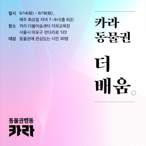 [카드뉴스]더배움 집중강좌 [사진그림류]