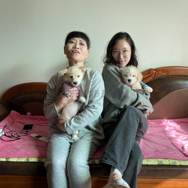 [입양후기사진] 알콩,달콤(개) [사진그림류]