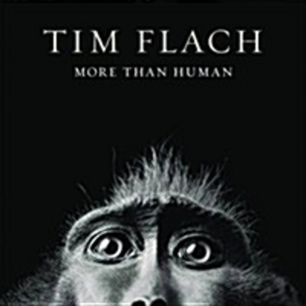More Than Human [동물도서]