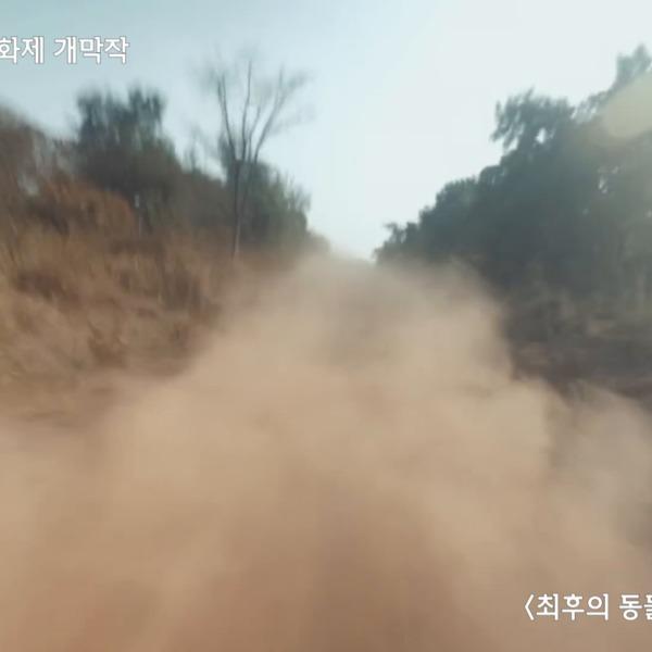 [영상]개막식 EPK 제2회 카라 동물영화제 [영상음성류]
