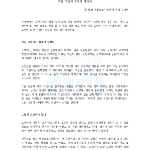 (원고) 매거진P 호두 구조 [문서류]
