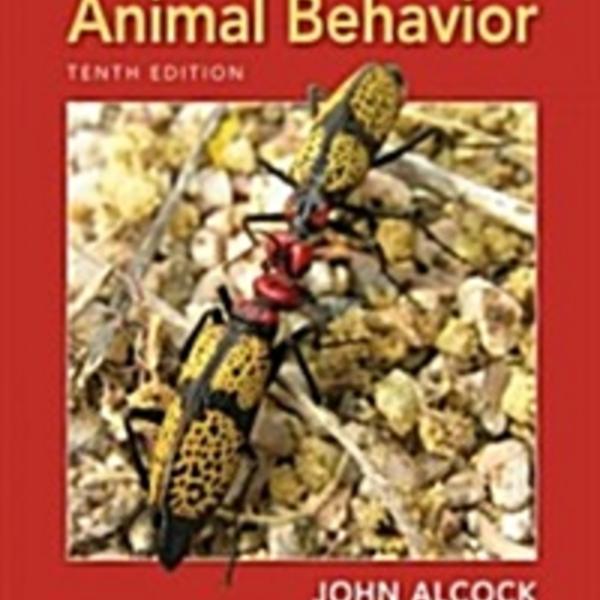 Animal Behavior : An Evolutionary Approach [동물도서]