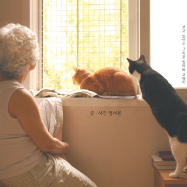 가족이니까 : 보고 있어도 그리운 엄마와 고양이 [동물도서]