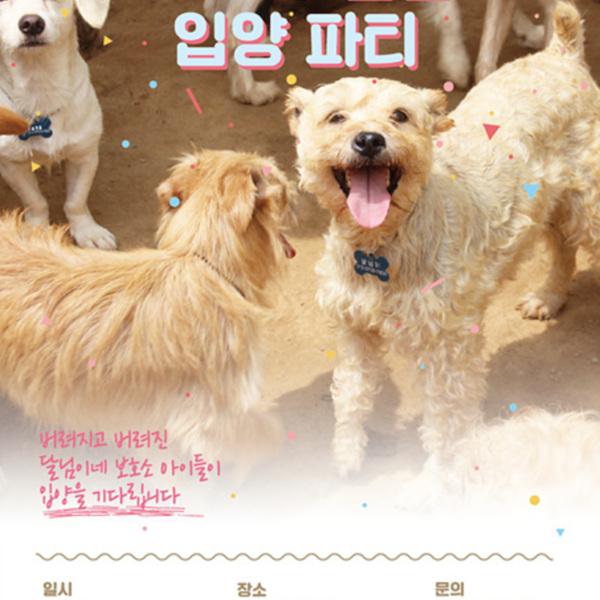 (입양행사) 달님입양파티(포스터) [사진그림류]