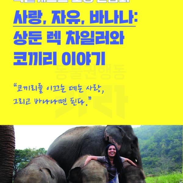제1회 카라 동물영화제 팝업 홍보물(간담회) [문서류]
