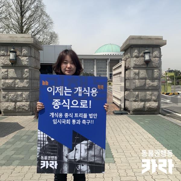 개식용 종식 법안 임시국회 통과 촉구 1인 시위 [사진그림류]