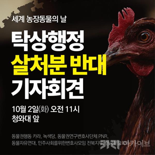 (웹자보) 탁상행정 살처분명령 취소청원 청와대 기자회견 [사진그림류]