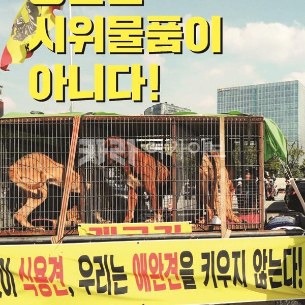 동물은 시위물품이 아니다 피켓 [문서류]