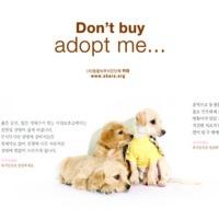 Don't buy adopt me… : 입양캠페인 광고 [사진그림류]