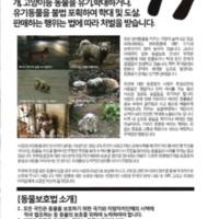 2008 유기동물 보호 관련 전단지  [문서류]