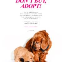 DON'T BUY, ADOPT! : 2015 지면광고 [사진그림류]