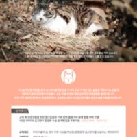 길위에도 사랑을 : 2015 길고양이와 케어테이커 교육 진행 안내 포스터 [사진그림류]