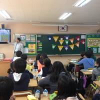 2013 찾아가는 동물보호교육 현장 : 초등학교 [사진그림류]
