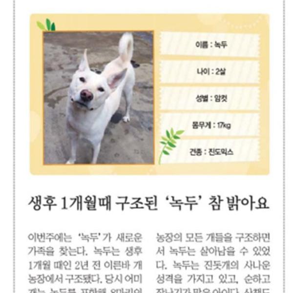 (기사) 파이넨셜뉴스동반자를찾습니다(녹두) [문서류]