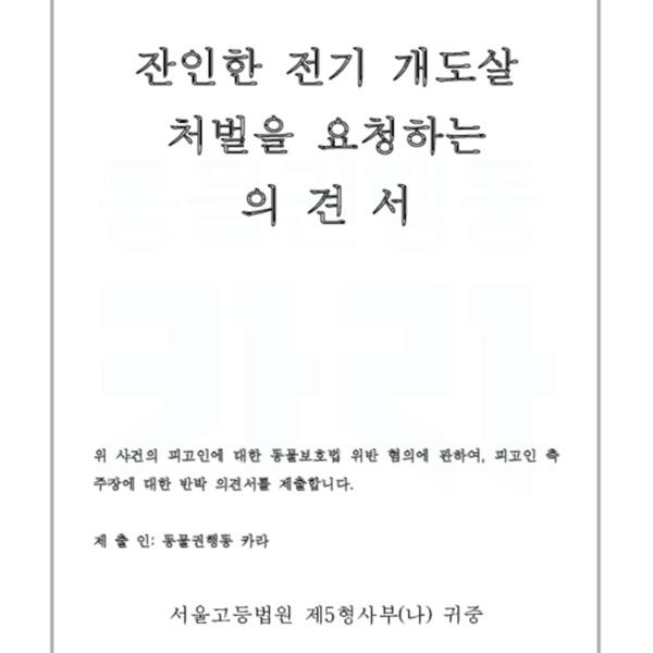 [의견서]카라 파기환송심 최종의견서 [문서류]