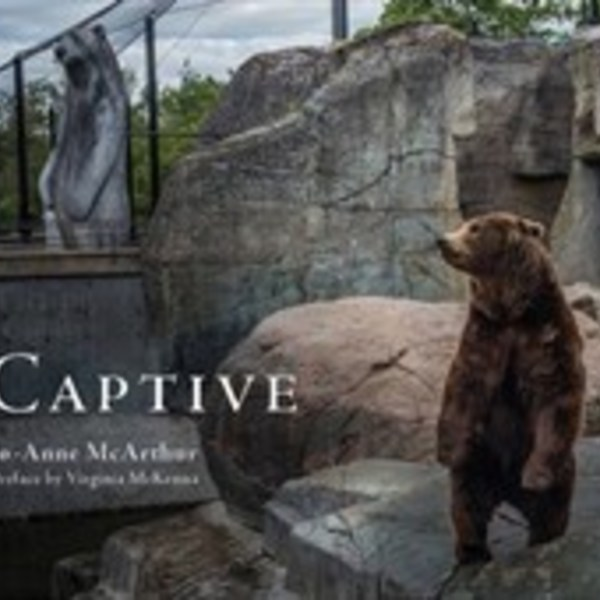 Captive [동물도서]