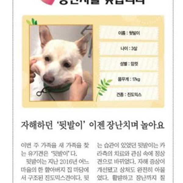 (기사) 파이넨셜뉴스동반자를찾습니다(뒷발이) [문서류]