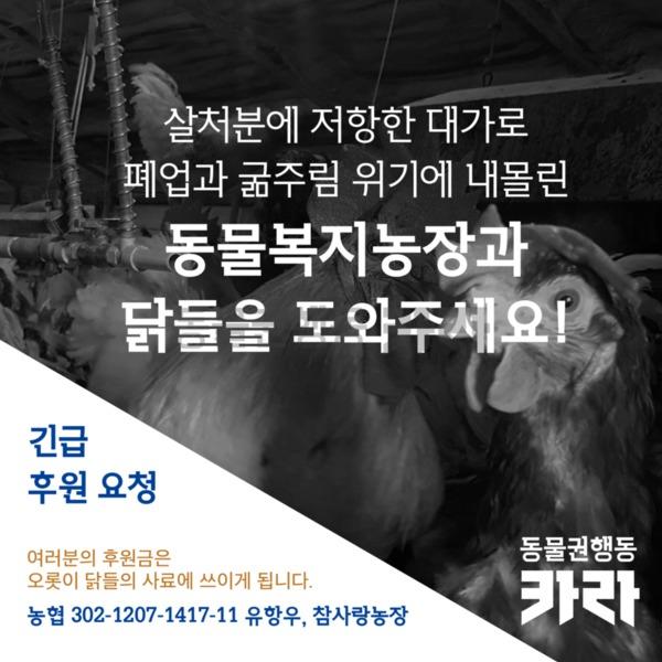 참사랑농장 긴급 사료후원 요청 [사진그림류]