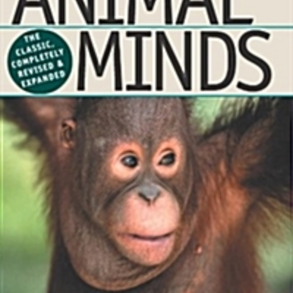 Animal Minds : Beyond Cognition to Consciousness [동물도서]