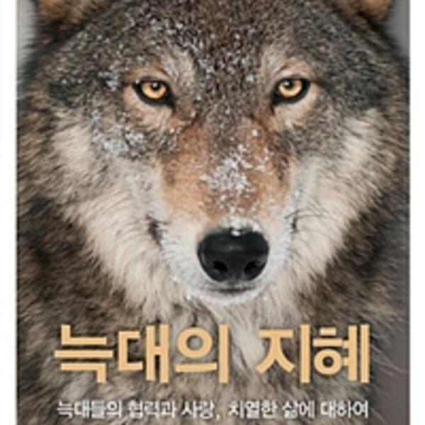 늑대의 지혜 : 늑대들의 협력과 사랑, 치열한 삶에 대하여 [동물도서]