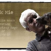 Pak Mie, a Muslim Man's Devotion to the Stray Dogs of Malaysia [동물영화]
