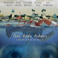 Cute Little Lobster [동물영화]