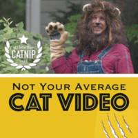 Not Your Average Cat Video [동물영화]