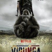 Virunga [동물영화]