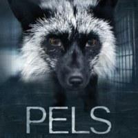 Pels [동물영화]