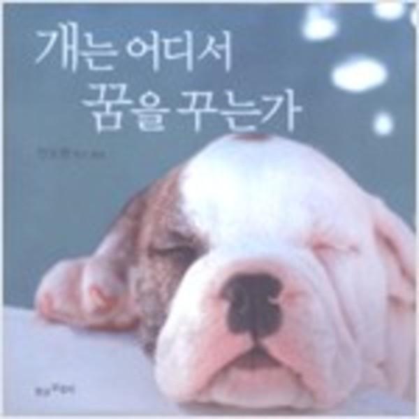 개는 어디서 꿈을 꾸는가 [동물도서]
