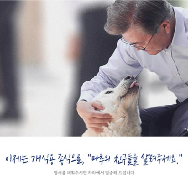 (엽서) 개식용종식대집회(앞) [사진그림류]