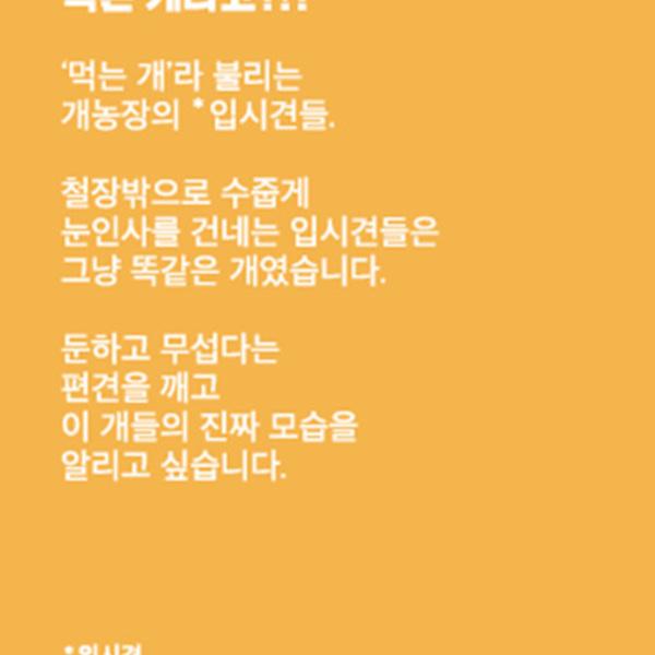(뱃지) 입시견 스토리펀딩 배경지 [사진그림류]