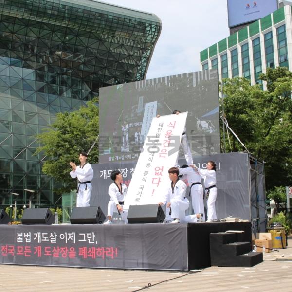 개식용 철폐 전국 대집회 [사진그림류]