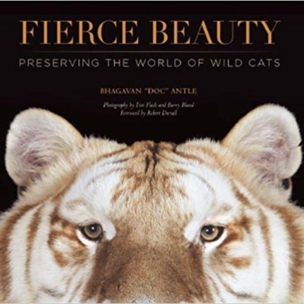 Fierce Beauty : Preserving the World of Wild Cats [동물도서]