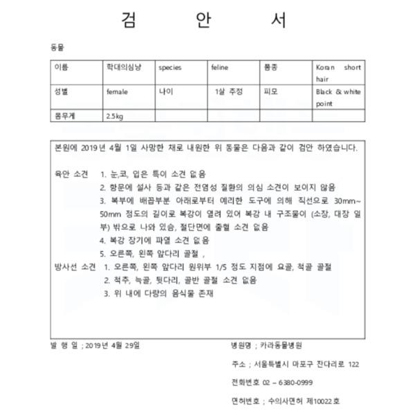 [검안서]안양시 만안구 길고양이 학대 사건 [문서류]