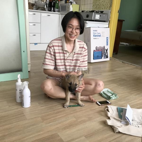 [입양후기사진] 까비(개) [사진그림류]