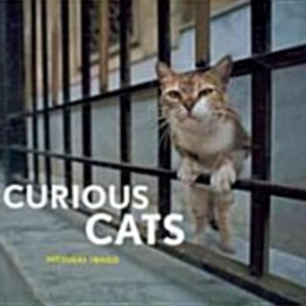 Curious Cats [동물도서]