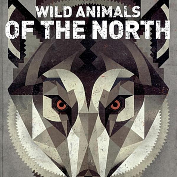 지구 북쪽에 사는 야생동물 : 세상에서 가장 아름답고 환상적인 동물 그림책! [동물도서]