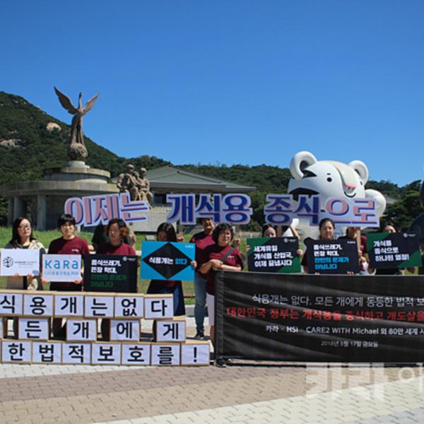 세계시민 서명 전달 청와대 앞 기자회견 HSI [사진그림류]