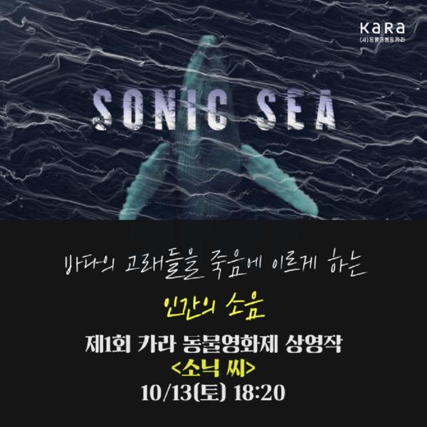 (카드뉴스) 제1회 카라 동물영화제(소닉씨) [문서류]