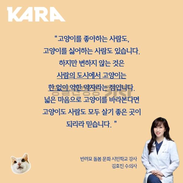 [카드뉴스] 반려묘돌봄문화시민학교 김효진강사 [사진그림류]
