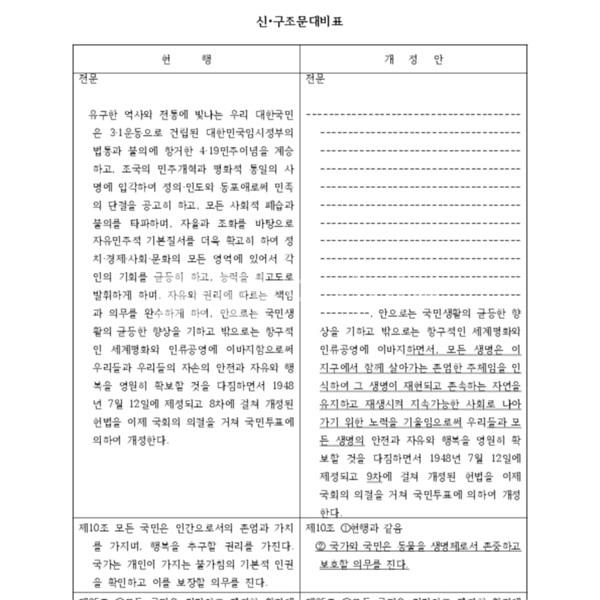 대한민국 헌법개정안 [문서류]