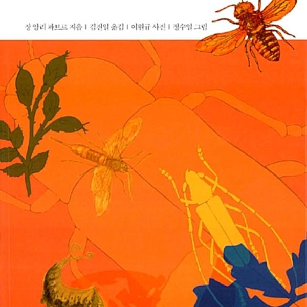 파브르 곤충기.4 [동물도서]