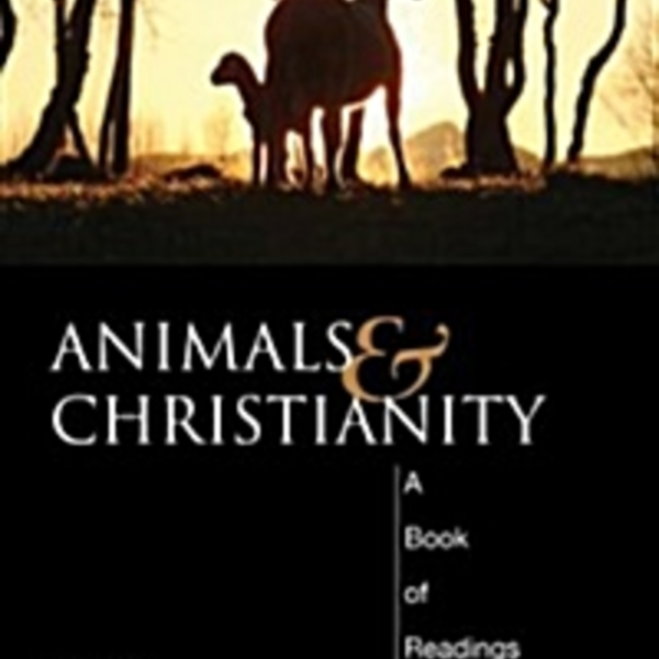 Animals and Christianity : A Book of Readings [동물도서]