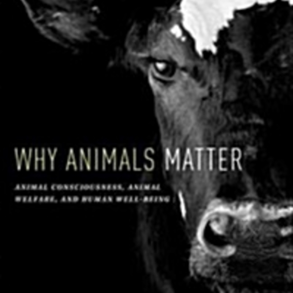 Why Animals Matter : Animal Consciousness, Animal Welfare, and Human Well-Being [동물도서]