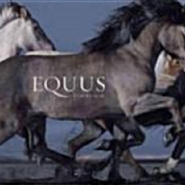 Equus [동물도서]