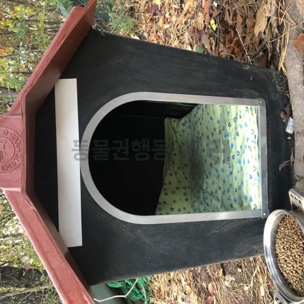 인천 계양구 방치견 환경개선 작업 월동준비 [사진그림류]