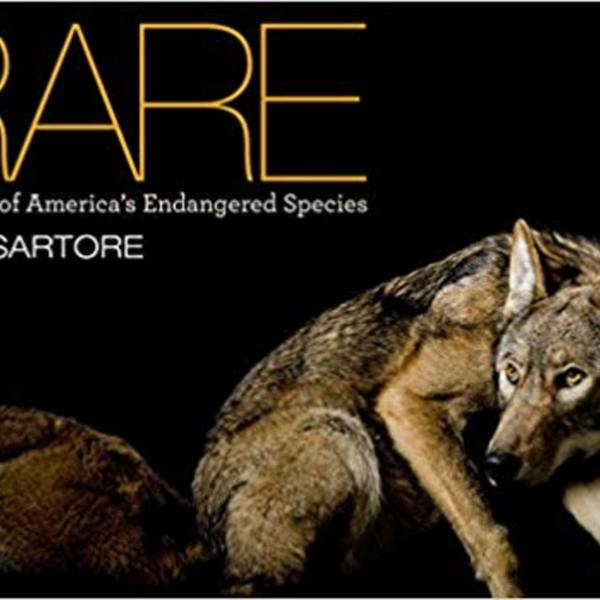 Rare : Portraits of America´s Endangered Species [동물도서]