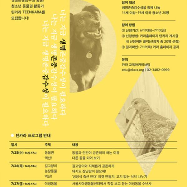 (포스터) 틴카라 [사진그림류]