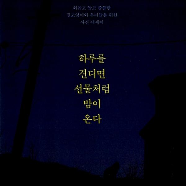 하루를 견디면 선물처럼 밤이 온다 : 외롭고 높고 쓸쓸한 길고양이와 우리들을 위한 사진 에세이  [동물도서]